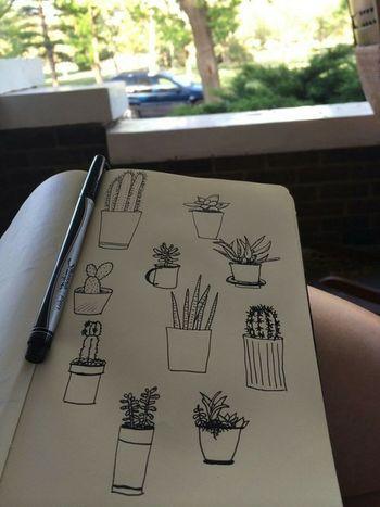 Fucking Paint Already Plants/trees That Look Like Something Else