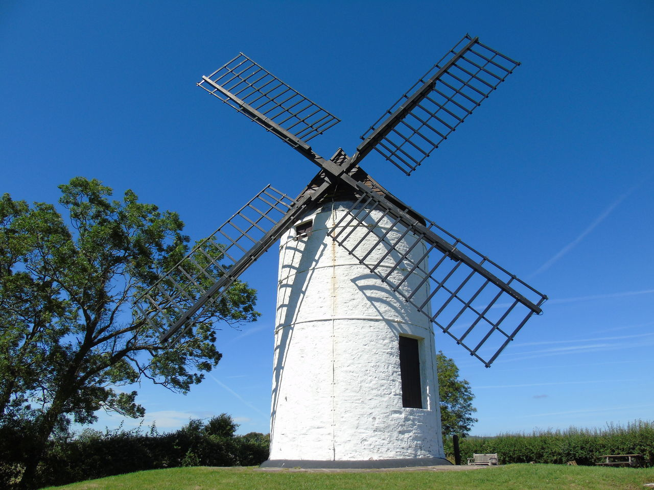 wind turbine, environmental conservation, wind power, renewable energy, alternative energy, fuel and power generation, windmill, traditional windmill, industrial windmill, field, technology, rural scene, day, nature, blue, outdoors, sustainable resources, solar panel, solar energy, no people, low angle view, tree, wind, clear sky, landscape, sky, grass, solar equipment