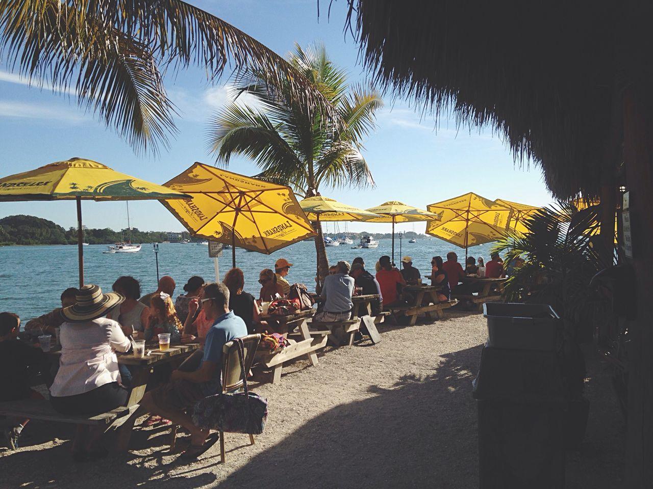 Open Edit Chillaxing Palm Trees Florida Beach Bar