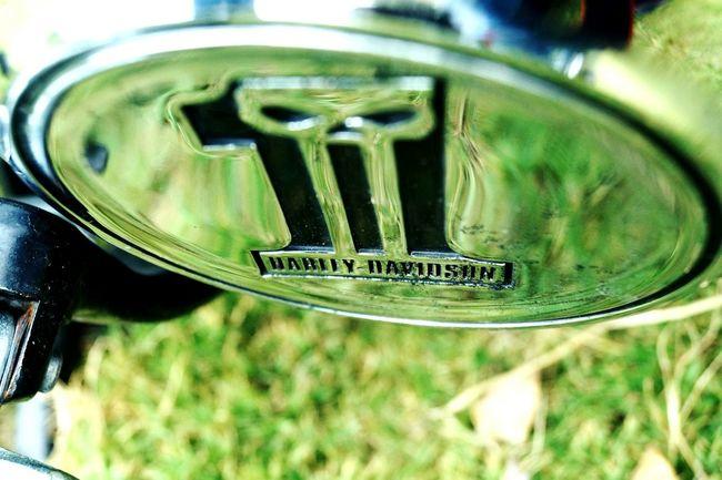 Learn & Shoot: Simplicity Harleydavidson Exposured Bikesaroundtheworld Beast Bikesinnature