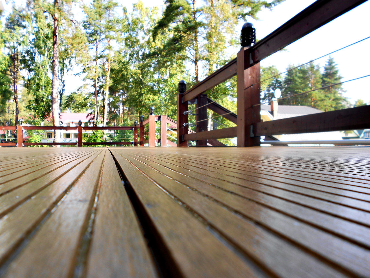 Close-up Day Footbridge Nature No People Outdoors Railing Tree Wood - Material Wood Paneling