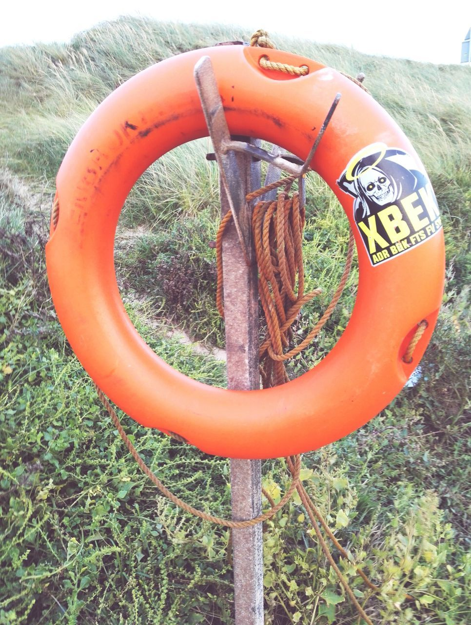orange color, life belt, safety, outdoors, inflatable ring, no people, circle, day, water, protection, nature, beauty in nature, grass, close-up