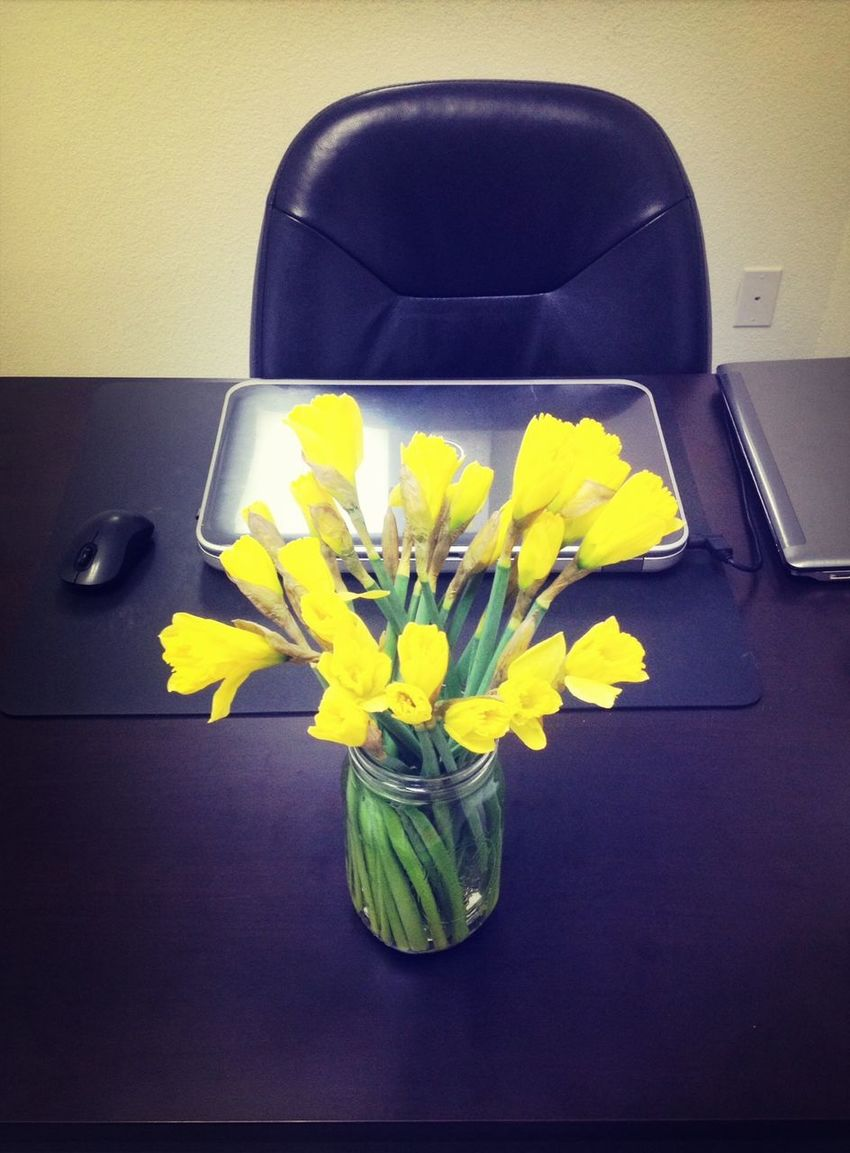 Flowers from my co-workers :>