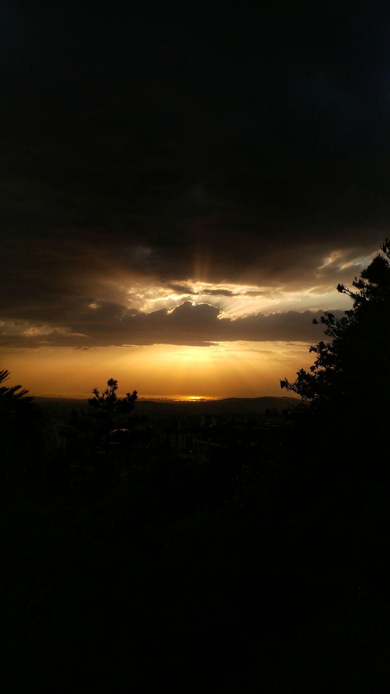 Sunset Silhouette Tree Dramatic Sky Dark Cloud - Sky Sky Landscape No People Night Nature Scenics Outdoors Forest Tree Area Beauty In Nature City Sehir Bulutlar Gunes Bulut Gunbatimi Manzara Day Dağ