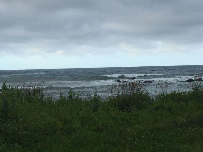 明日に期待。 北海道 Surfing オホーツク 風が冷たい