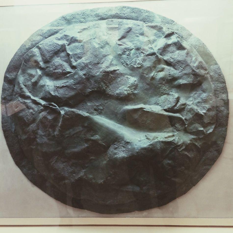 Spartan War Shield