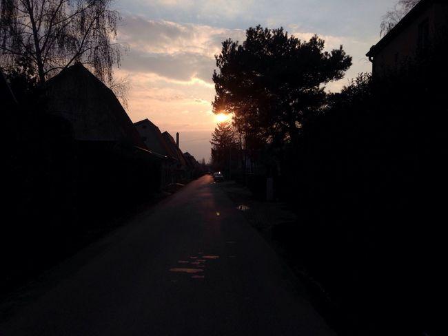 Nofilter#noedit Hello World Hi! Sun Goes Down Sun ☀ Tree🌳🍂🍃🍁