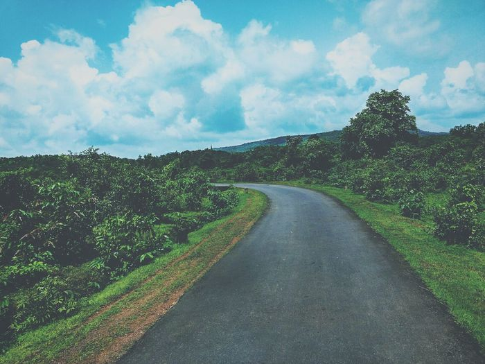 The Way Forward Road Tree Long Transportation Landscape Empty Green Nature Sky Growth Cloud Tranquil Scene Tranquility Countryside Day Remote Solitude Green Color Plant Cloud - Sky Tourism Nature Travel Destinations Non-urban Scene