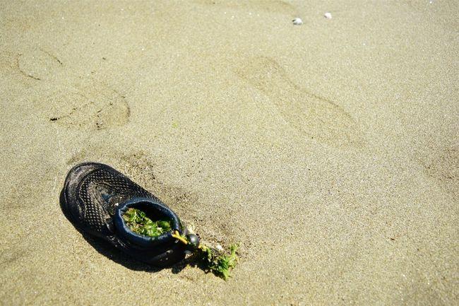 Sandy Beach Seaside Shose End Of Summer