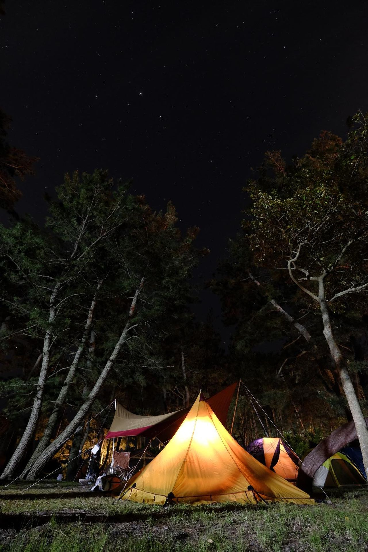 Camping Trip Night Outdoors