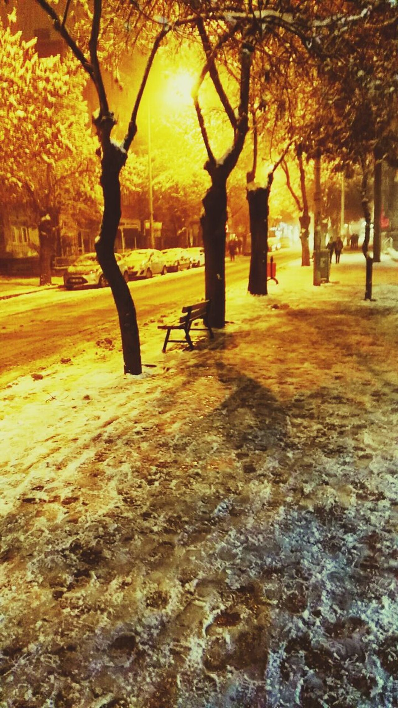 Snow ❄ Snowing Winter Cold Temperature Snow Walk Turkey Burdur No People Streetphotography Night