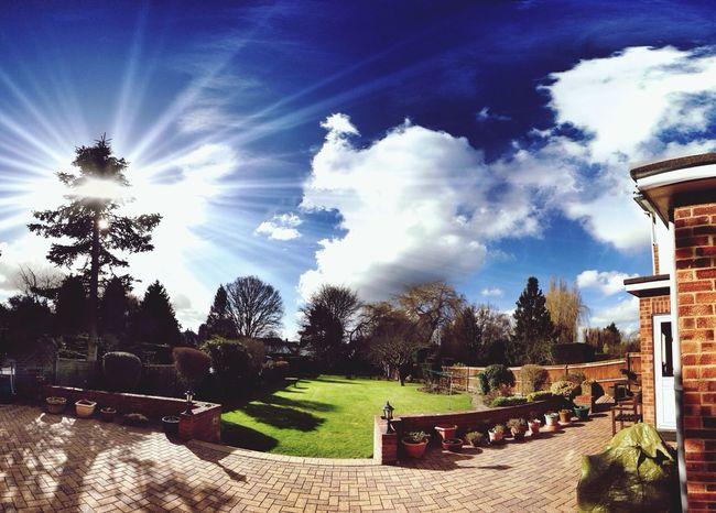 A lovely day Sunny Day Garden