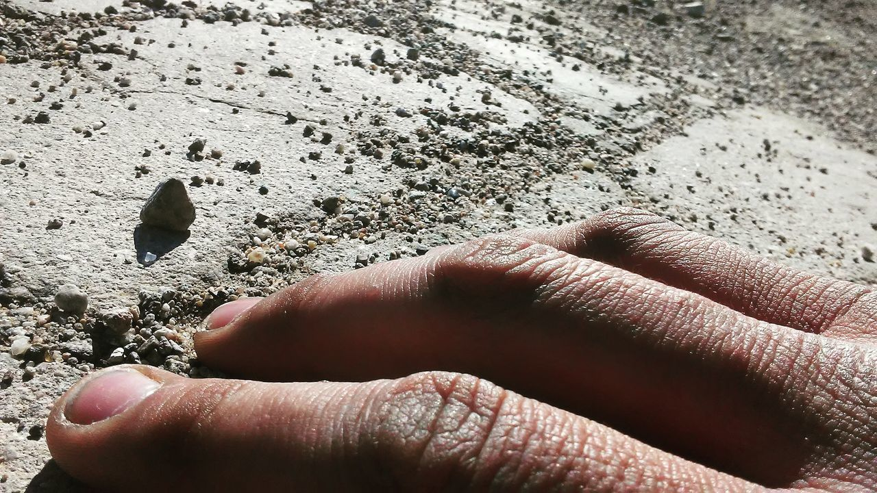 human hand, human body part, one person, real people, sand, day, close-up, sunlight, outdoors, beach, nature, people