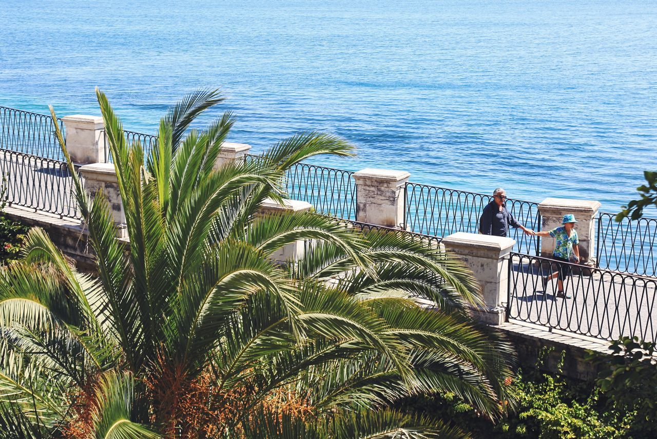 Sea High Angle View Water Railing Palm Tree Day Nature Beach Outdoors Plant Horizon Over Water Blue Growth Vacations No People Tree Grass Architecture Italy Travel Destinations Summer Beauty In Nature Palm Tree People Promenade