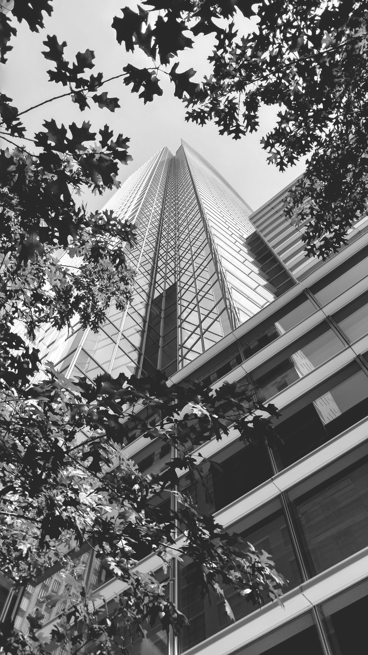 Houston is pretty cool sometimes 😏😏 I Love My City Architecture Downtown B&w Street Photography