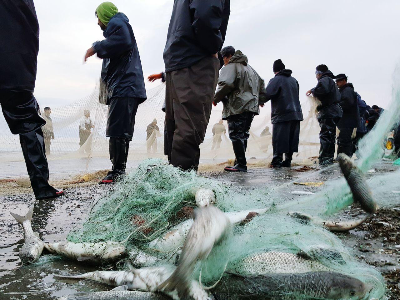 Photography In Motion Fishing Anzali,gilan, Iran Samsung Galaxy Note 5 Caspian Sea