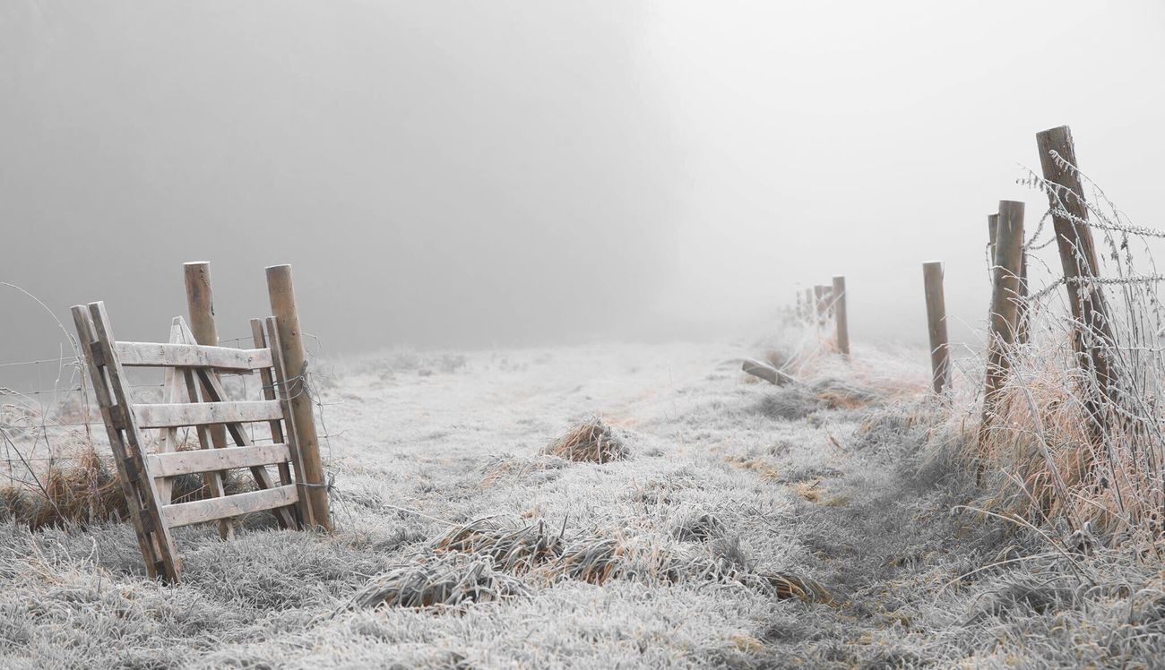 Winter Snow Winter Wood - Material Fence Cold Temperature Outdoors No People Fog Day Nature Beauty In Nature Landscape Snowing Sky