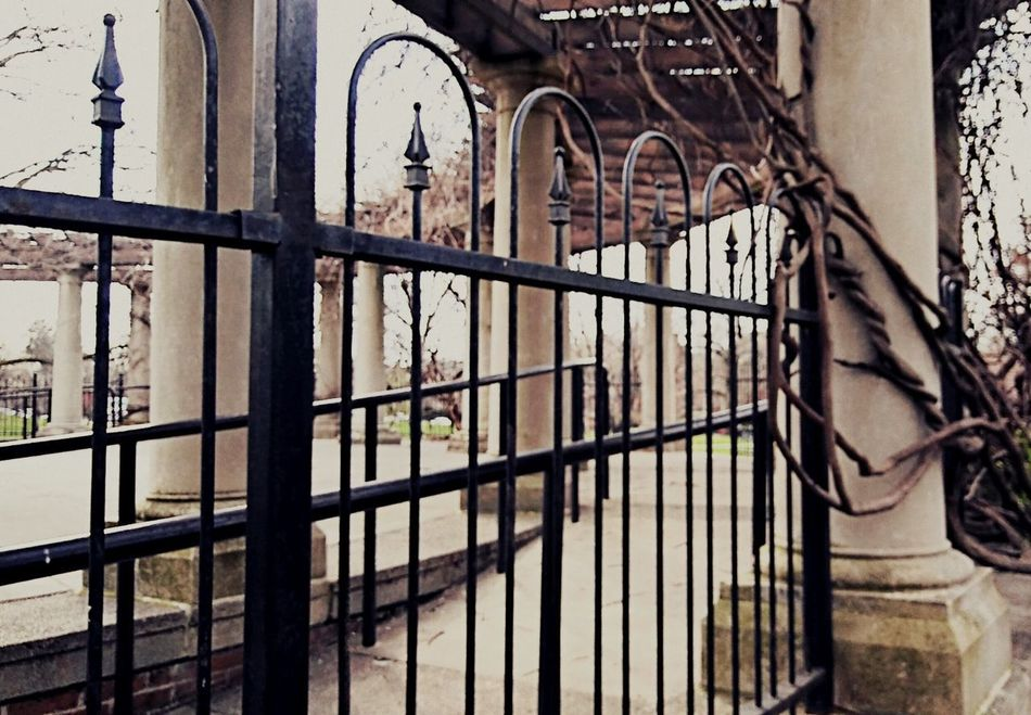 Architecture Metal Gate Built Structure Window Day Outdoors Architectural Column Man-made Structure Wrought Iron building exterior Close-up Prison outdoor theatre at the park Pergola Vines