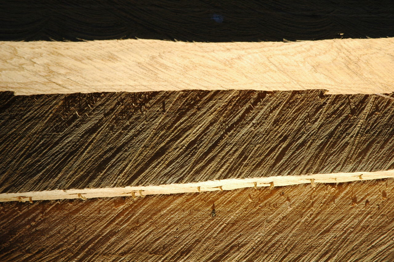 wood - material, industry, no people, indoors, hardwood, day, nature, close-up