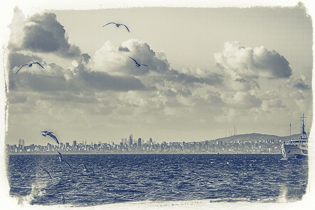 blackandwhite landscape Taking Photos boats Seagulls clouds and sky Istanbul popular Great atmosphere Nice atmosphere eye4photography  bisgen Hanging out Relaxing sea by Ersin Bisgen