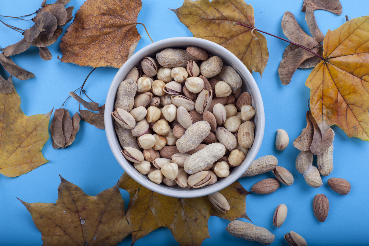 Autumn leaves and peanuts Day Dried Fruit Food Food And Drink Healthy Eating High Angle View No People Nut - Food Nutshell Walnut