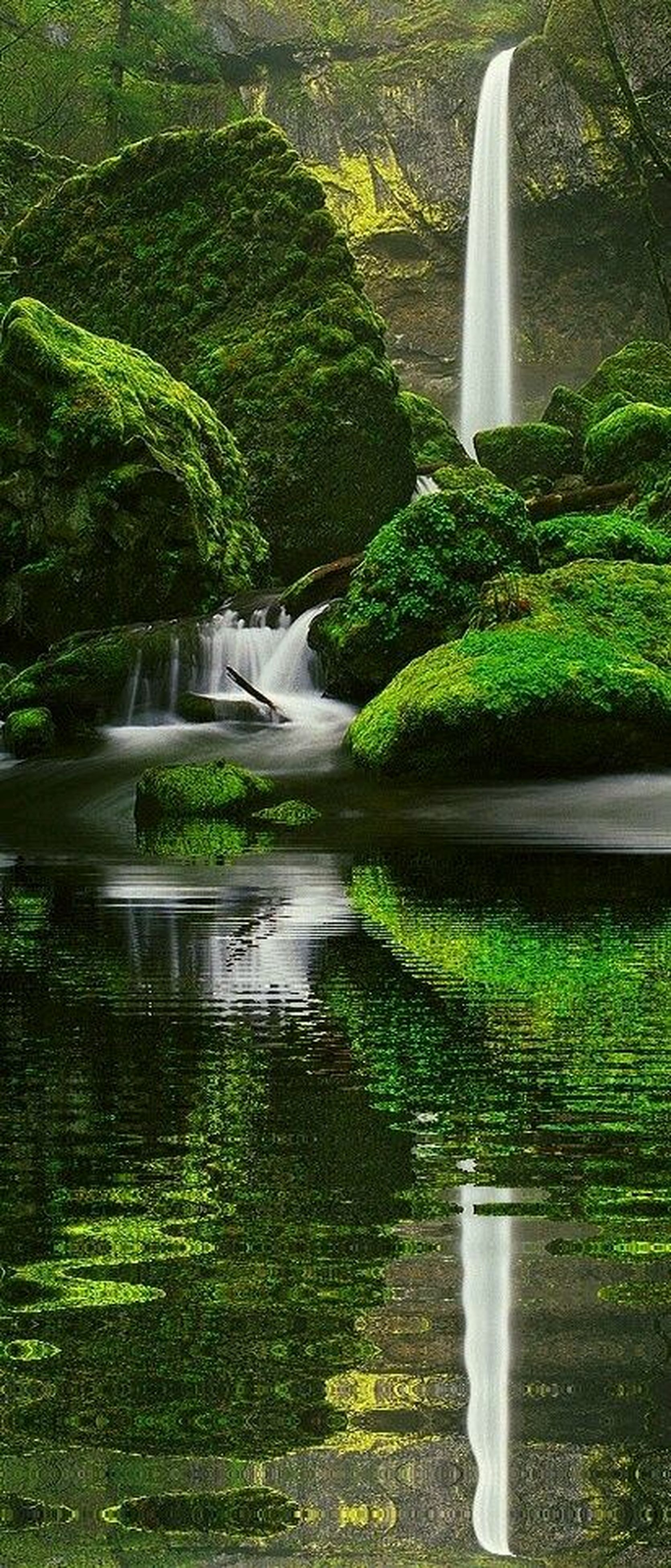 green color, waterfall, water, flowing water, tree, motion, plant, flowing, growth, nature, beauty in nature, grass, long exposure, lush foliage, scenics, green, fountain, forest, day, outdoors
