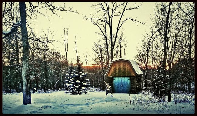 Lonely Shed Streamzoofamily Country Life Minnesota Check This Out