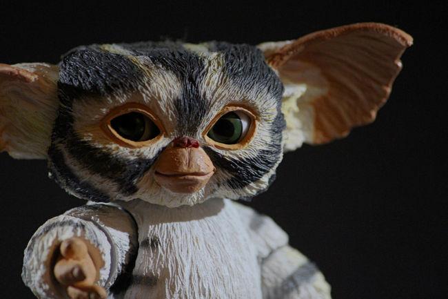 Gremlin Gremlins Mogwai Toyphotogallery Toyphotographers Toyphotography Toysaremydrug