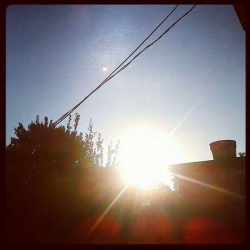 Bom dia Sp...