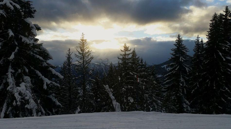 Enjoying The Sun En Face De Chez Moi.... Mountains Clouds And Sky Surlespistes Trees