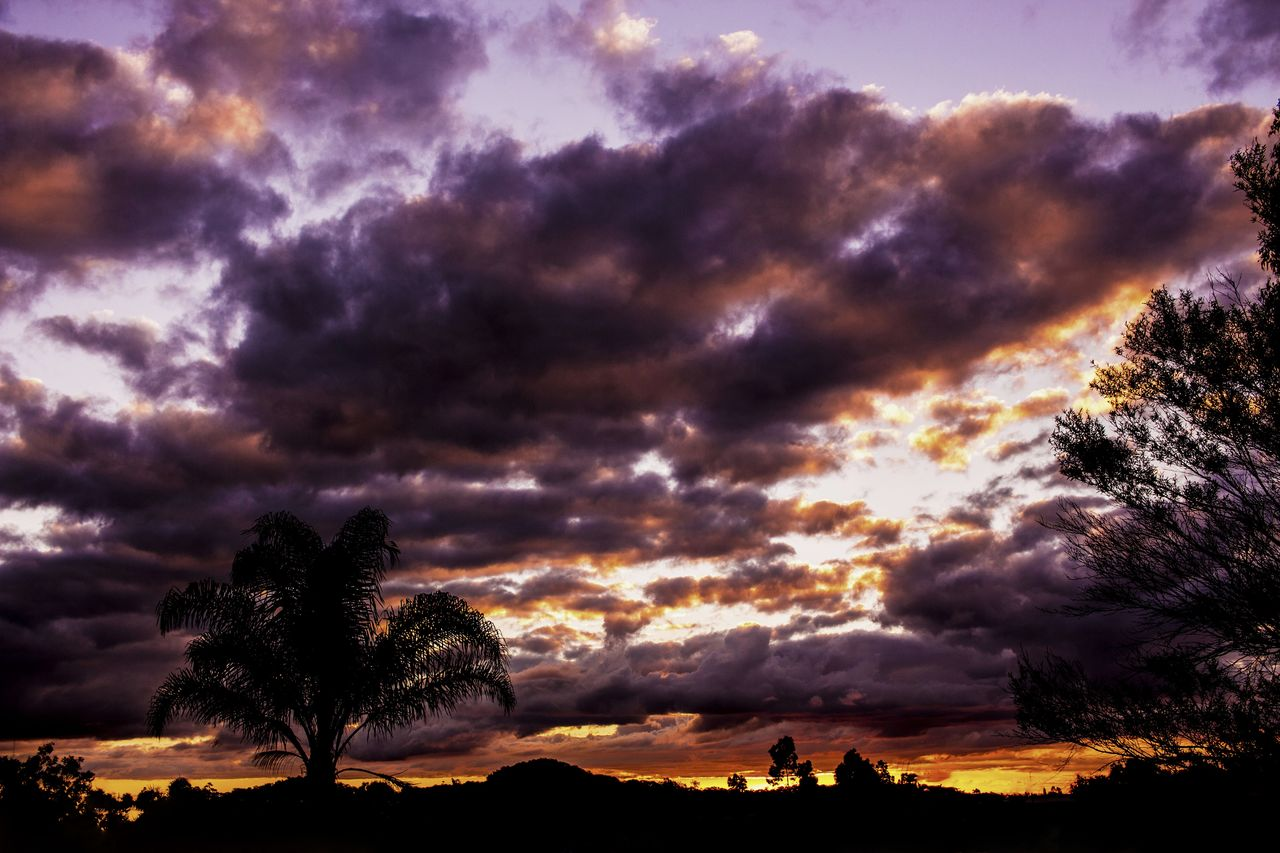 cloud - sky, sky, beauty in nature, dramatic sky, tree, nature, sunset, scenics, silhouette, tranquility, tranquil scene, no people, outdoors, storm cloud, low angle view, landscape, day
