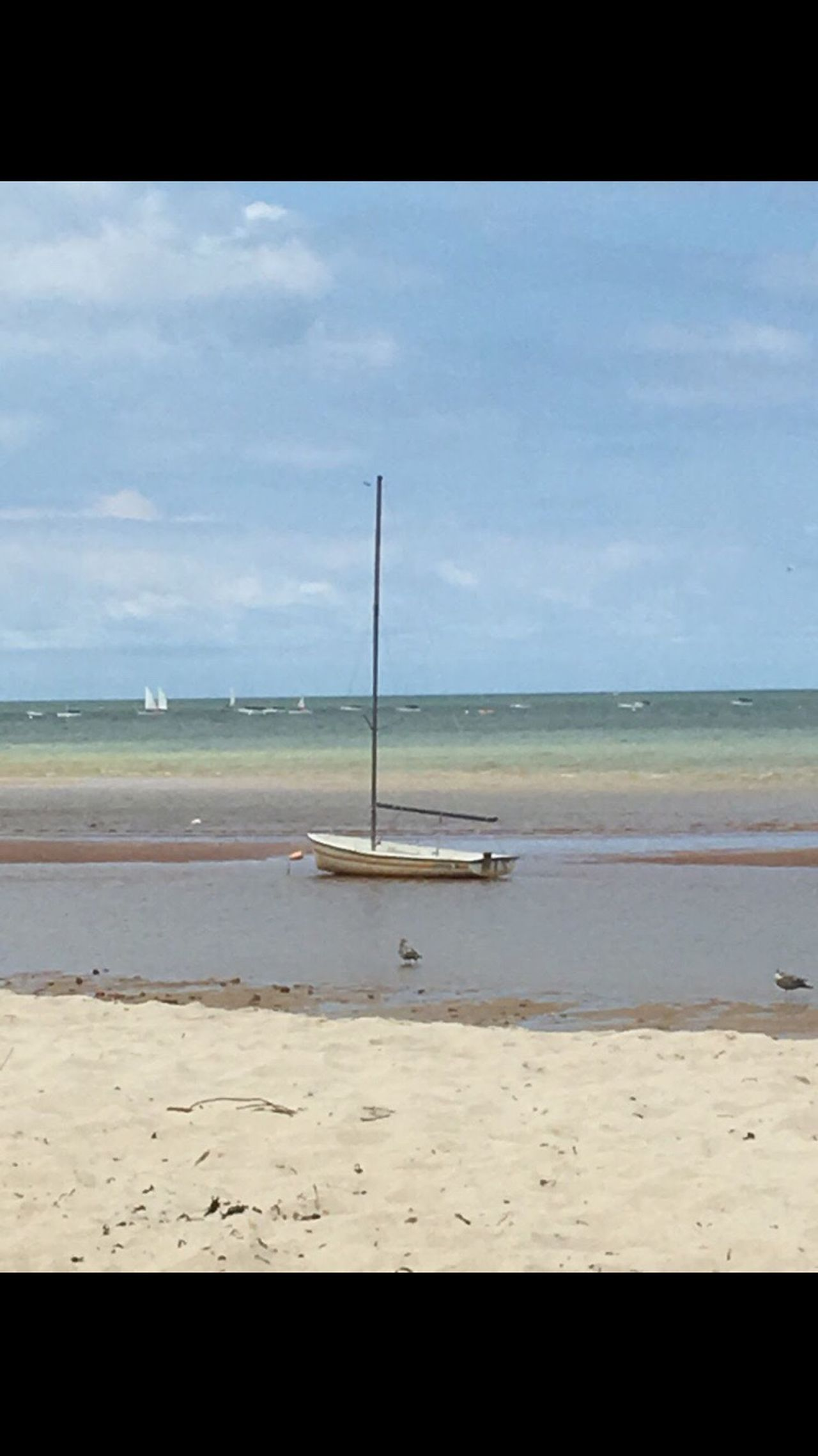 Cape Cod No Filter Sea Beach Sand Nature Nautical Vessel Water Sky Transportation Shore Horizon Over Water Outdoors Tranquility Day No People Beauty In Nature
