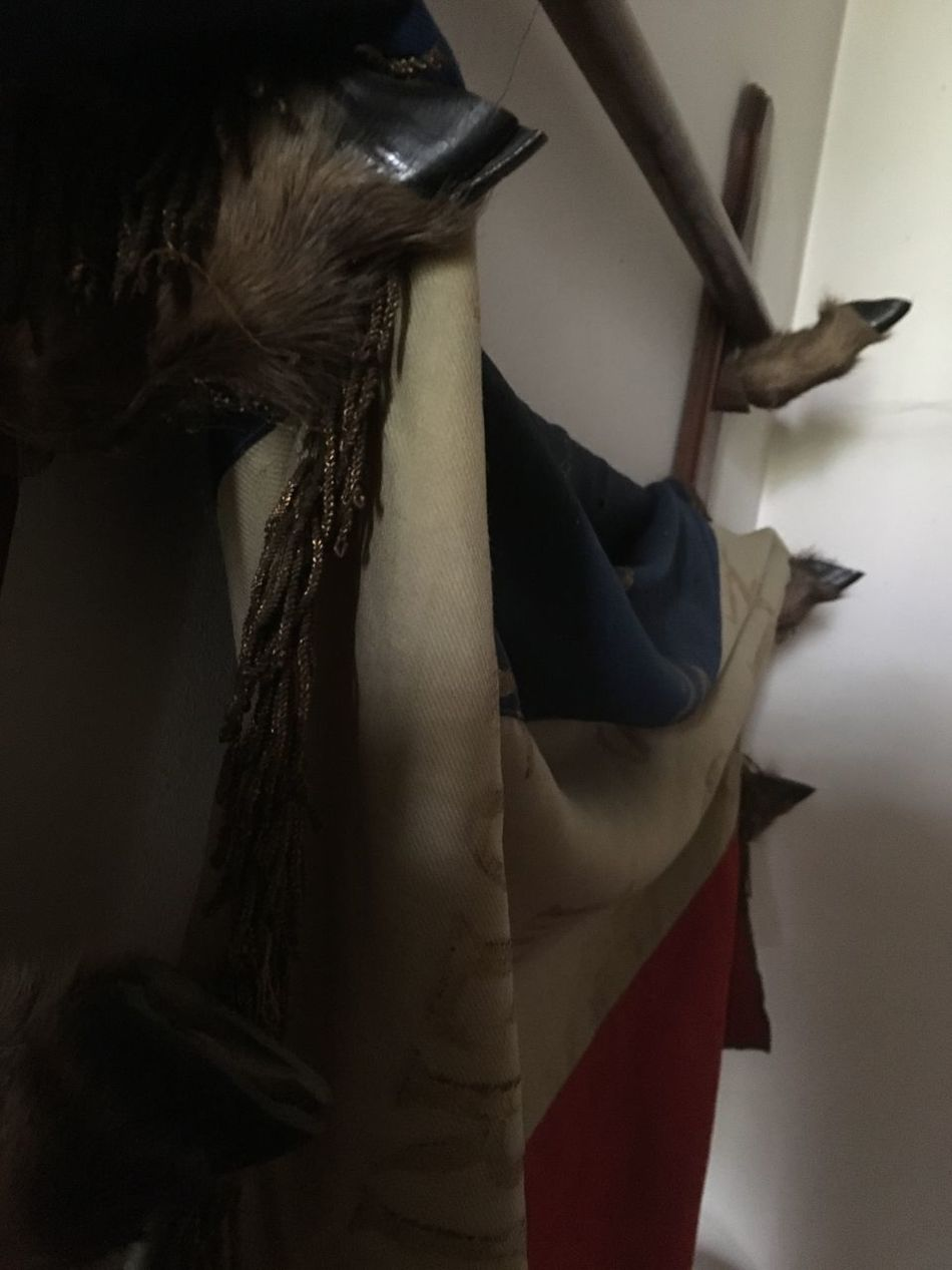 French Flag Indoors  Old Buildings Animal Furniture Animal Leg