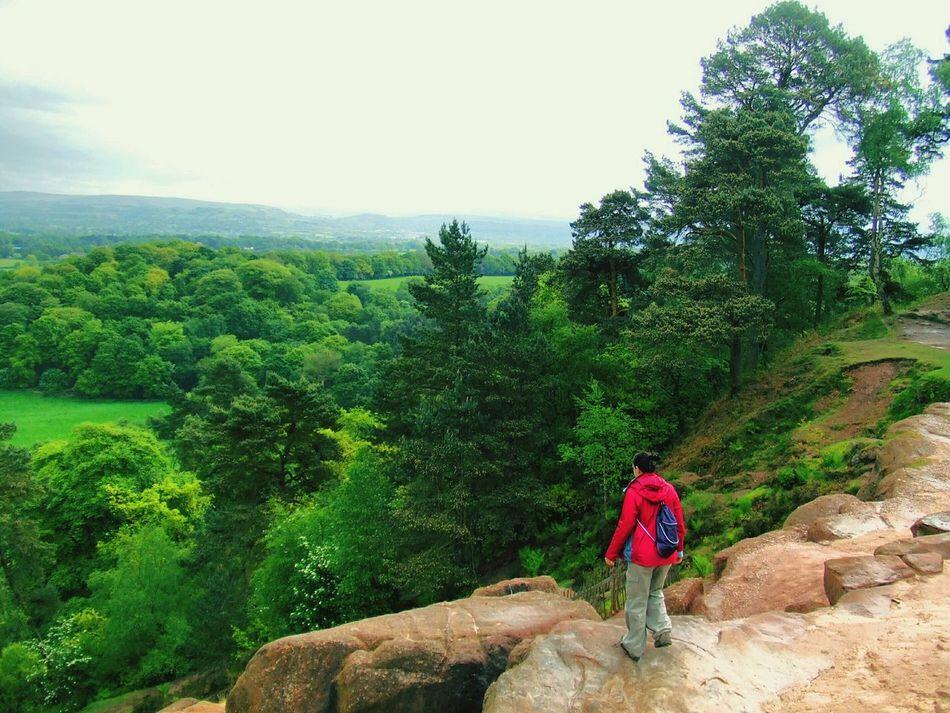 Green Fields Trees Rocks Cliffs Enjoying The View Walking Around Taking Photos in Alderley Edge Cheshire