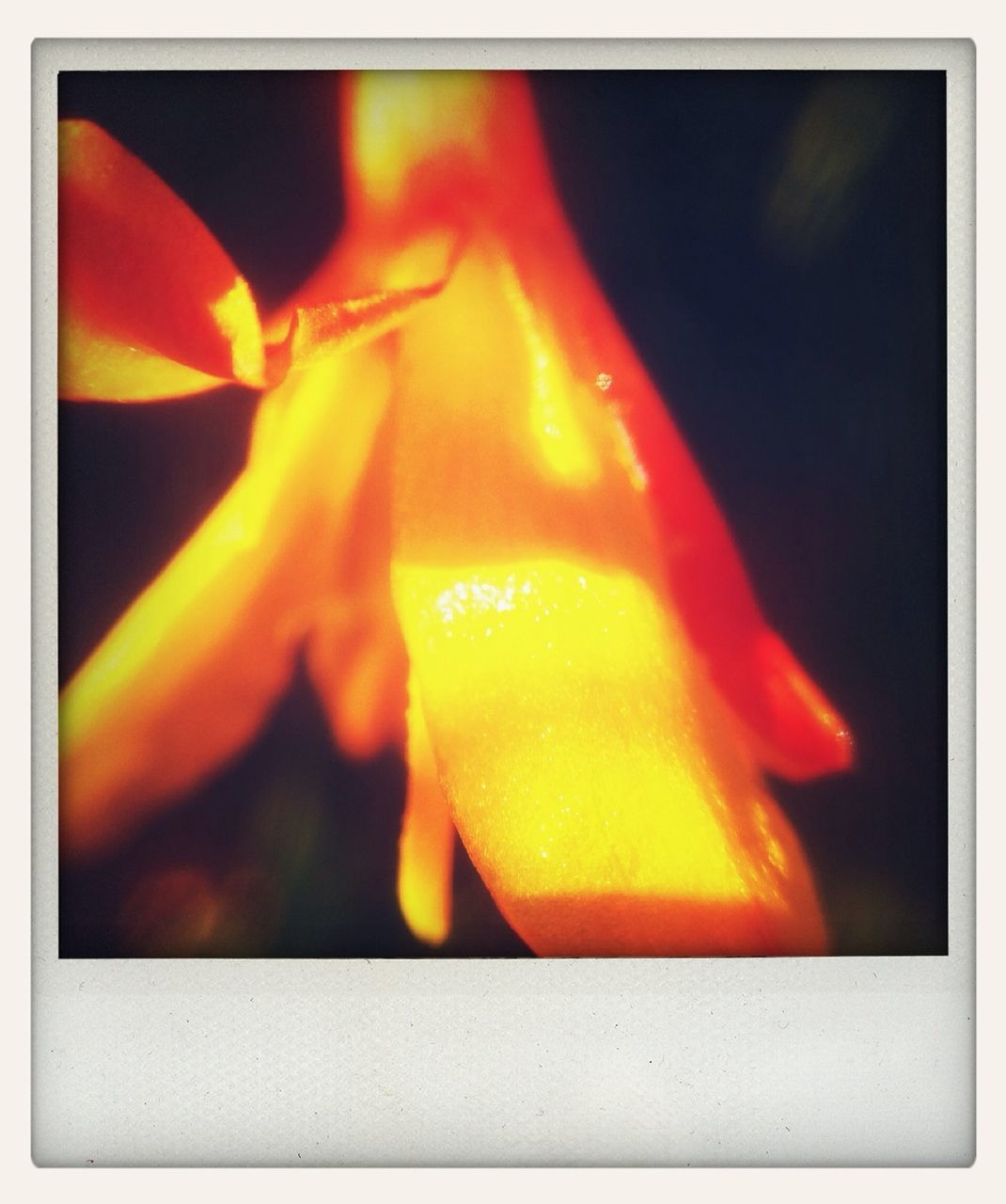 burning, orange color, flame, heat - temperature, no people, close-up, yellow, indoors, multi colored, night
