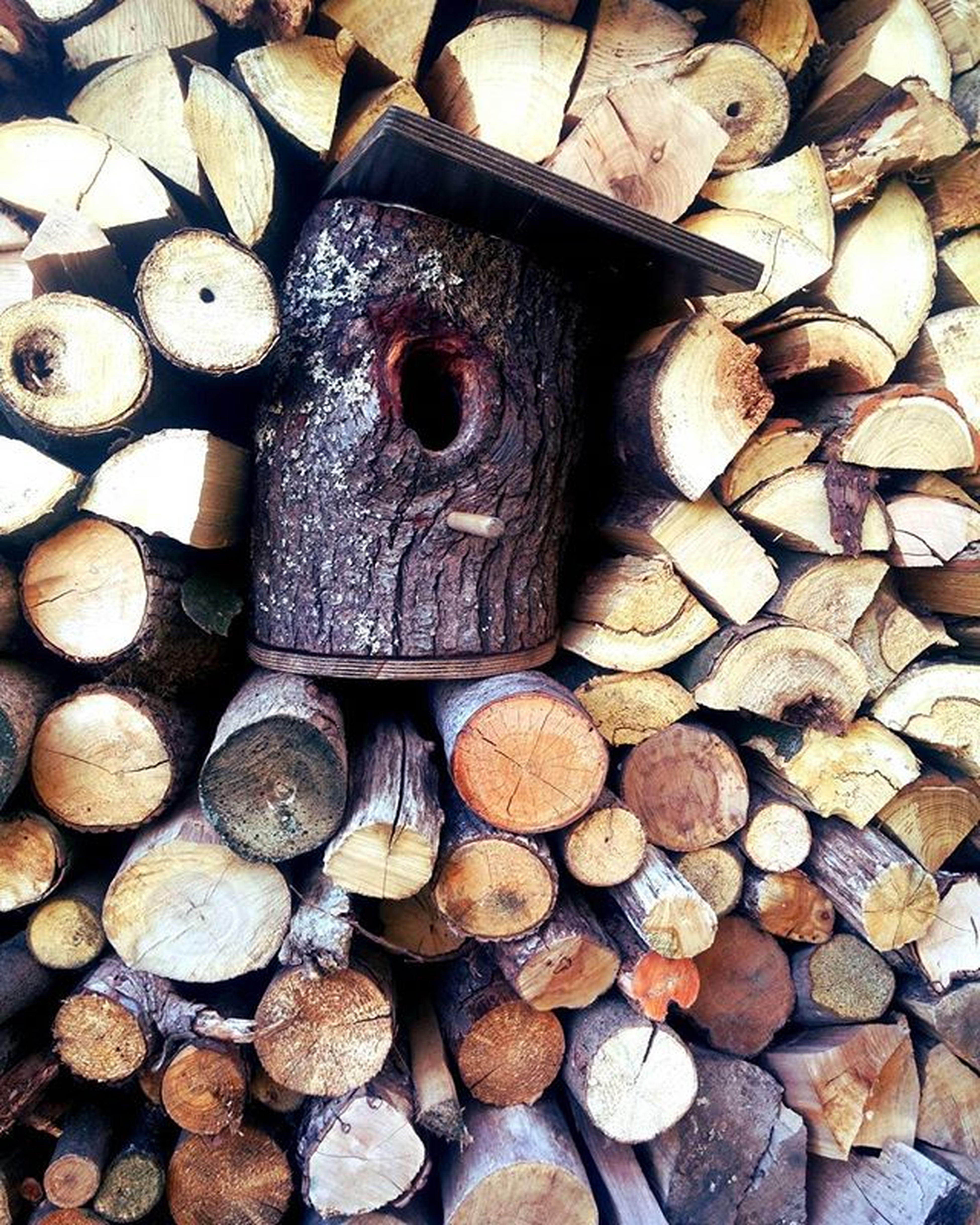 💒 Cozy Home House For Birds Wood Impressed Nature Naturelovers Enjoy Placeforlife Tiny Cute Domcek