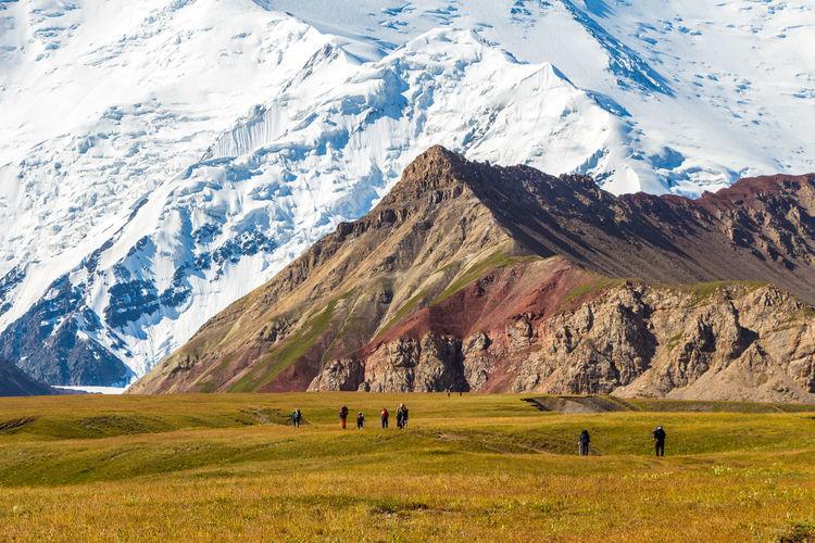 Hiking Kyrgyzstan Pamir Mountains Trekking Adventure Beauty In Nature Cold Temperature Day Grass Grazing Landscape Mountain Mountain Range Nature Outdoors Pamir Scenics Snow Snowcapped Mountain Travel Destinations Winter