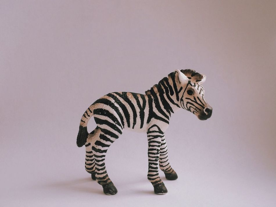 Beautiful stock photos of toys, Animal Representation, Art And Craft, Day, No People