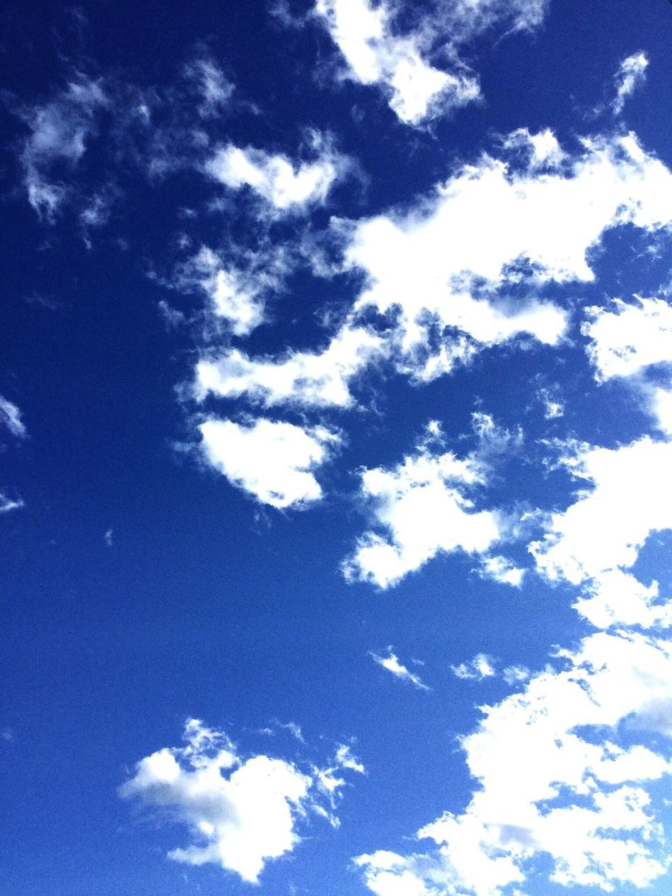 Colour Of Life Relaxing Perfect Shot Perfect Clouds And Sky Blissful Beauty In Nature Beautiful Windy Day Perfect Sky