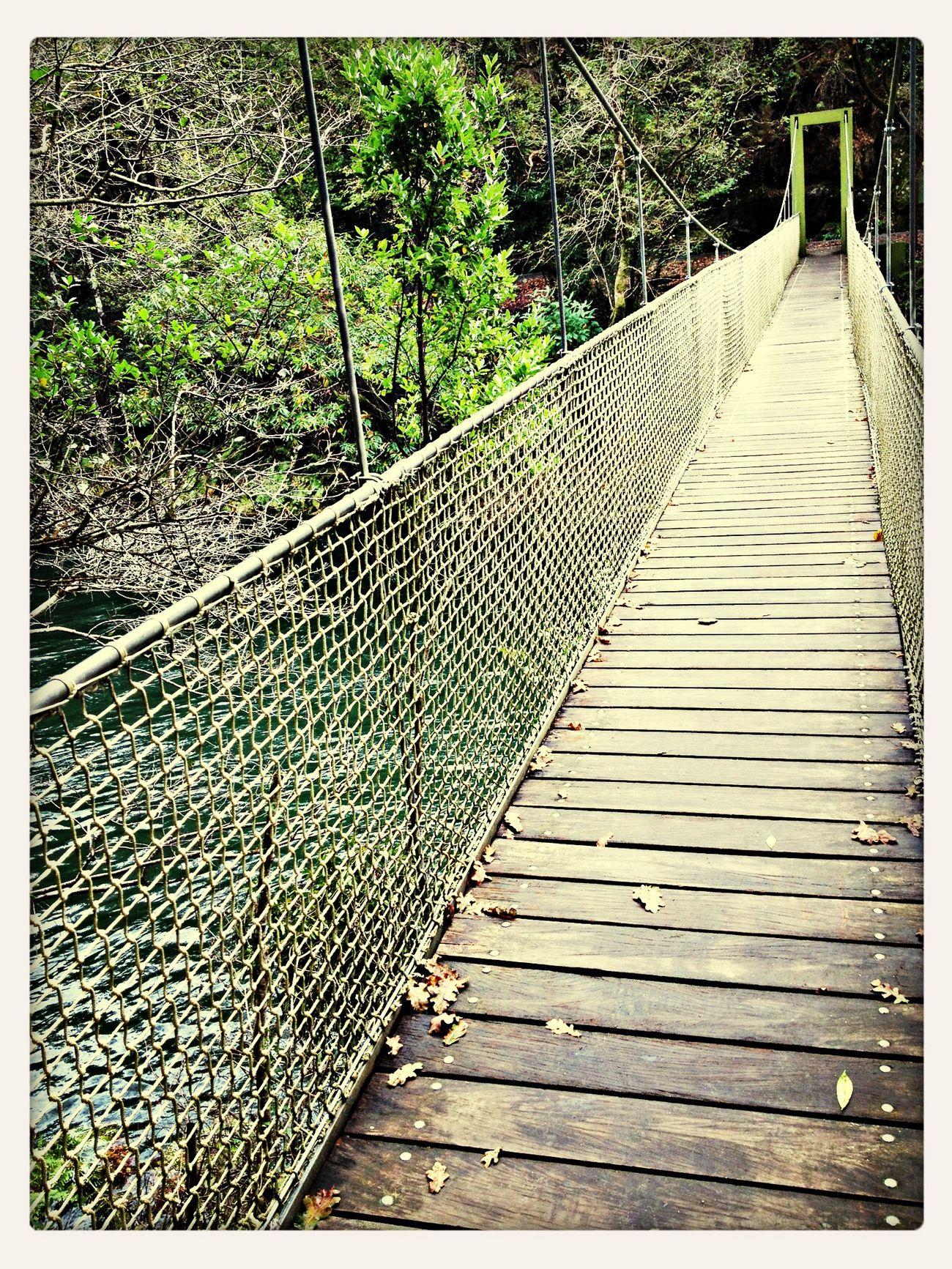 Todos los caminos son sencillos... sólo debes caminarlos.