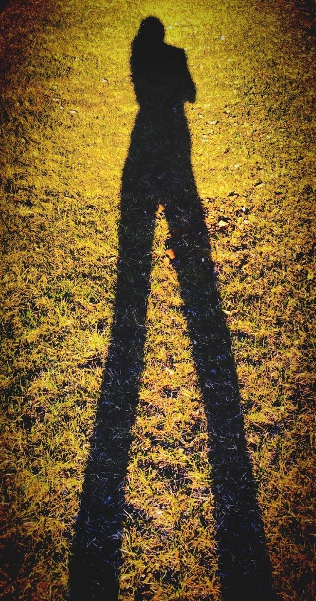 Shadow Shadows Silouette Silouette And Shadows Sun And Silhouettes Shadow-art Shadowplay Shadows And Silhouettes ShadowSelfie