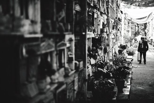 Cemetery Cemetery City Architecture Day Streetphotography Streetphoto_bw Death Sadness Santiago Chile Old Cript
