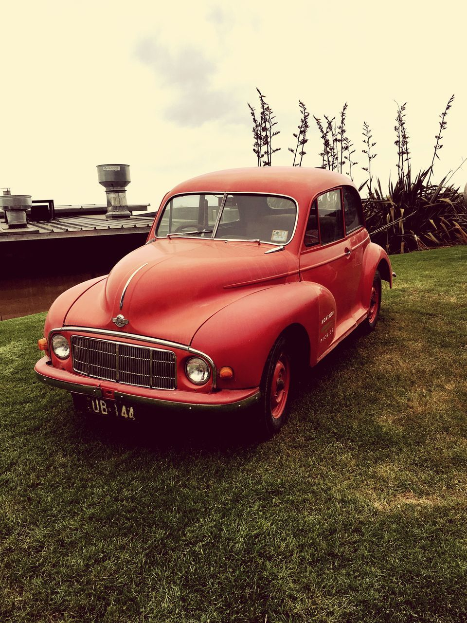retro styled, grass, red, old-fashioned, car, day, no people, transportation, land vehicle, tree, outdoors, nature, sky
