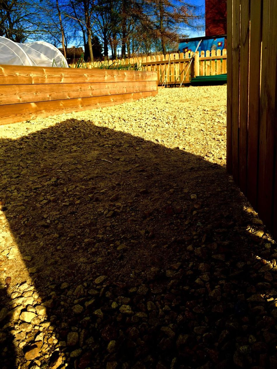 How Do We Build The World? School Allotment Growing Vegtables Shadow Gate Looking Into The Future Sustainable Living Nature Allotment