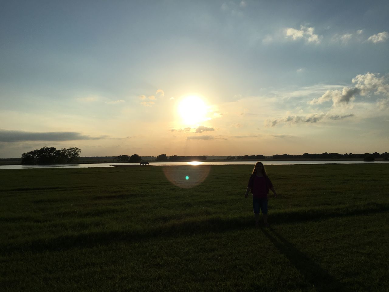 sunset, field, nature, real people, landscape, grass, beauty in nature, sun, sky, scenics, rear view, silhouette, one person, leisure activity, men, growth, standing, tranquility, sunlight, tranquil scene, outdoors, lifestyles, agriculture, full length, cloud - sky, rural scene, tree, day, people