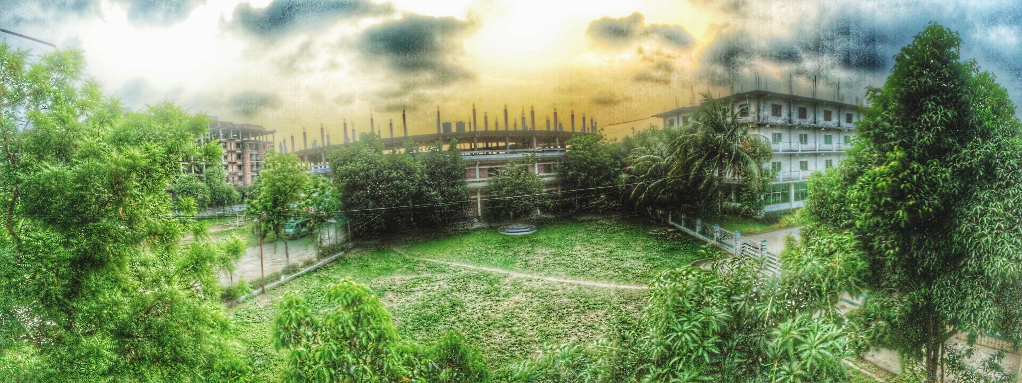 grass, tree, growth, green color, field, sunbeam, plant, sunlight, nature, tranquility, sky, built structure, architecture, building exterior, sun, beauty in nature, tranquil scene, landscape, grassy, lens flare