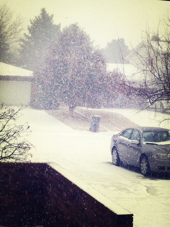 Snow Is Just Too Beautiful