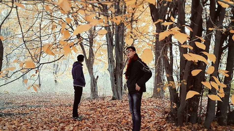 Autumngarden