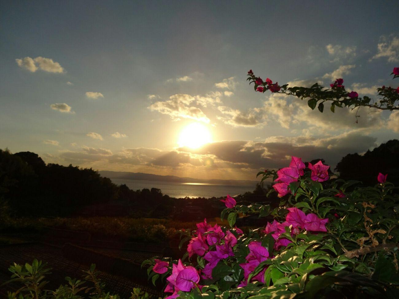 Nagasaki Japan Sasebo 佐世保 の 夕日 さむーい(。>ㅅ<。)
