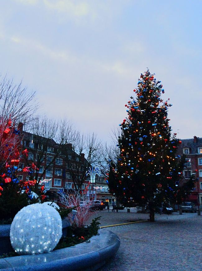 Christmas Tree Christmas Lights Holiday Enjoying Life Lisieux Visiting With Friends Winter Cold